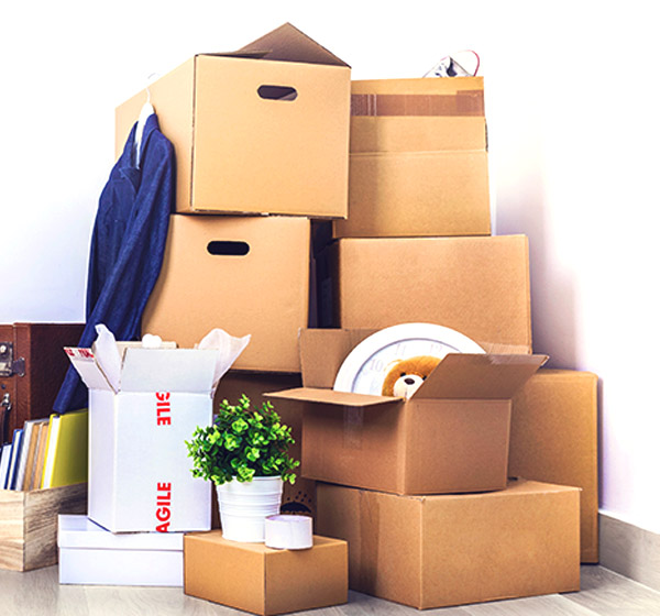 alliance packers and movers Bangalore